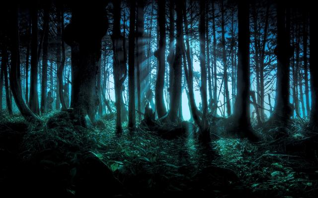 64271193_dark-forest.jpg - Click to close this window